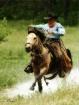 hard gallop