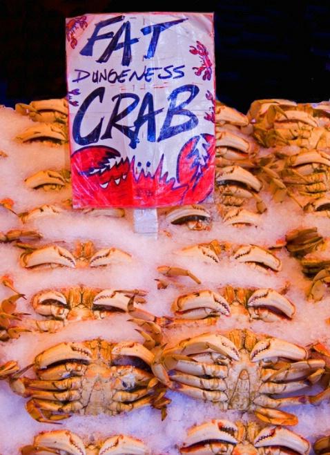 Fat Crab - ID: 1587414 © Robert A. Eck