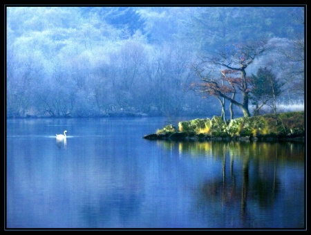 Frosty morning on the lake
