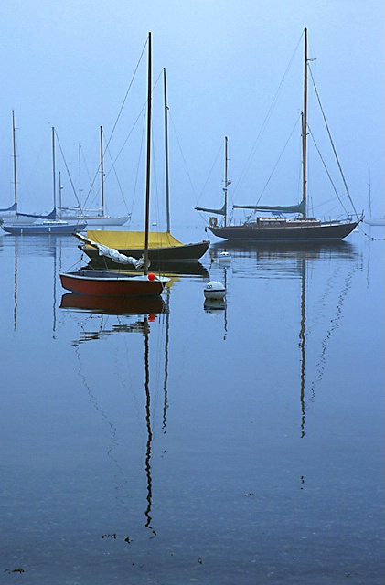 Sailboats at Castine, Maine