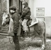 Switzerland pony ...