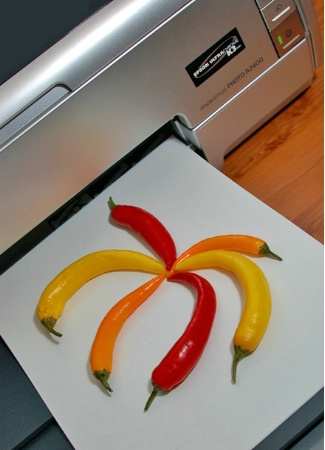 Pepper Colors Transformed Perfectly