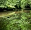 Maxwell Creek II ...