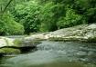 Maxwell Creek III...
