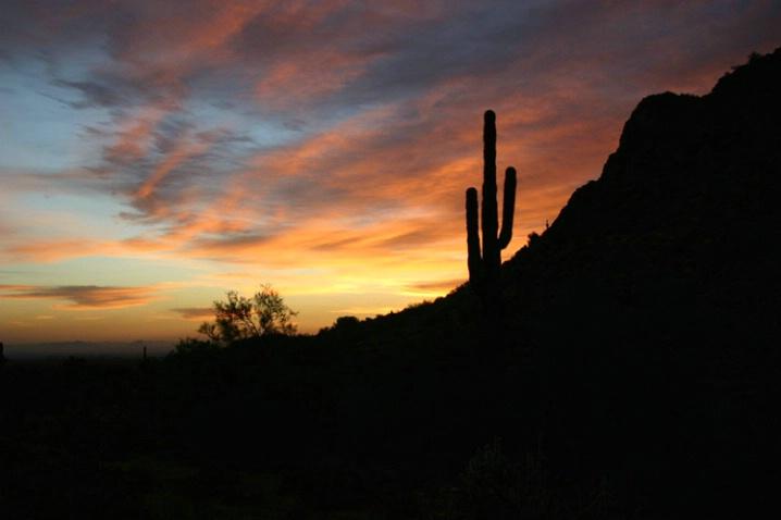 First Sunrise 2006 - ID: 1623628 © Patricia A. Casey