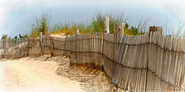 Follow The Fence To The Ocean