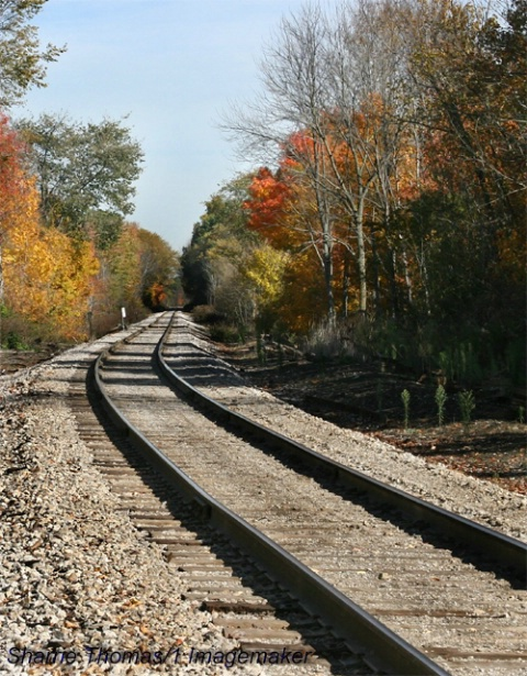 Railway Into Autumn