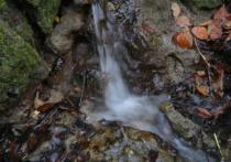 A Liitle Waterfall