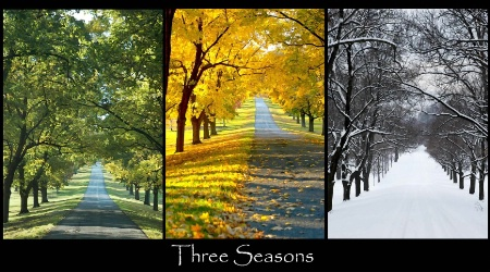 Summer, to Autumn, to Winter