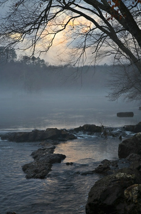 Ouachita River Low Fog