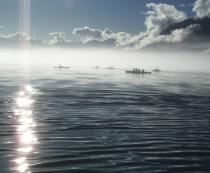 Kayaks in Fog