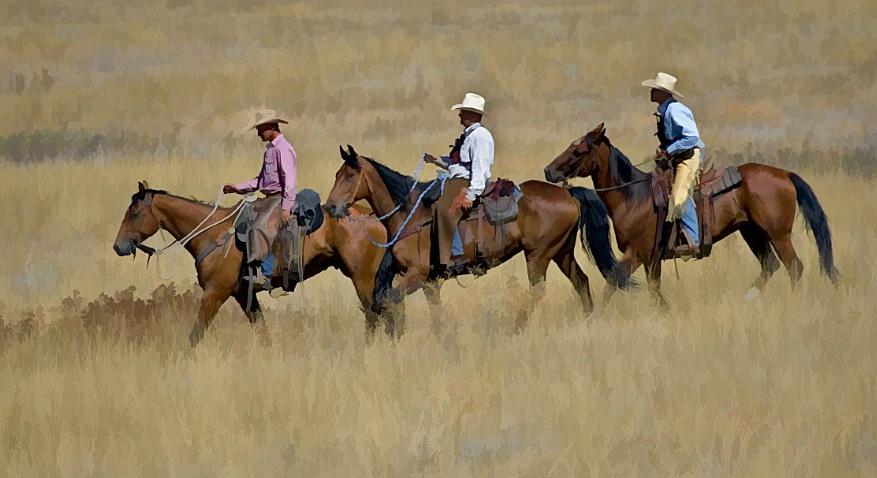 3 Horsemen - ID: 1719670 © Jim Kinnunen