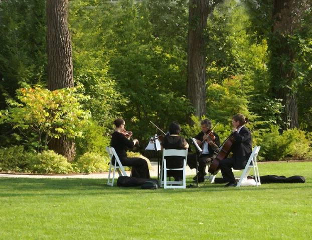 String Quartet in the Park