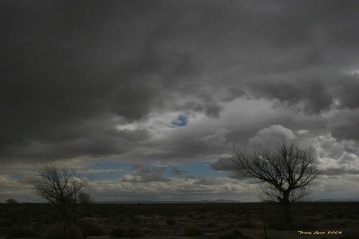Desert Storm Brewing  - ID: 1788262 © Tracy L. Hart