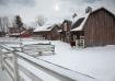 Winter at the Far...