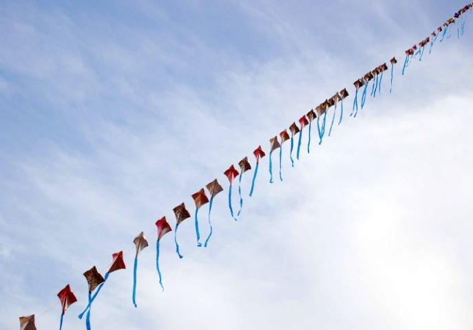 Kites-1