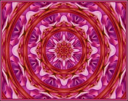 * Purple, Pink & White *