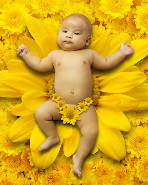 Baby Lay On Yellow Flower