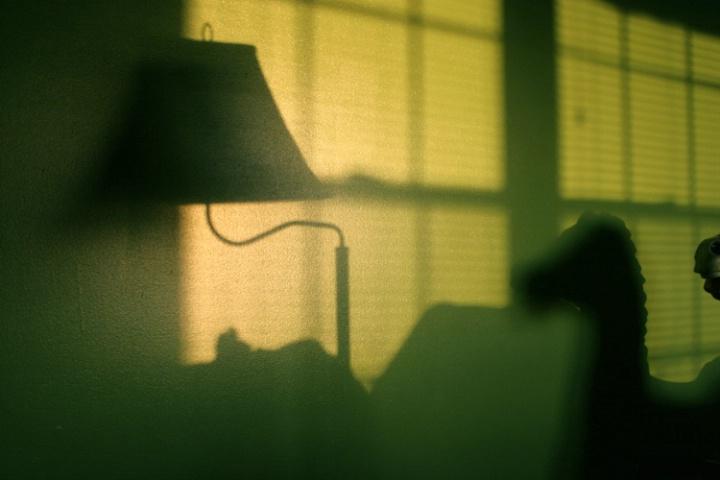"""Evening Shadows"""