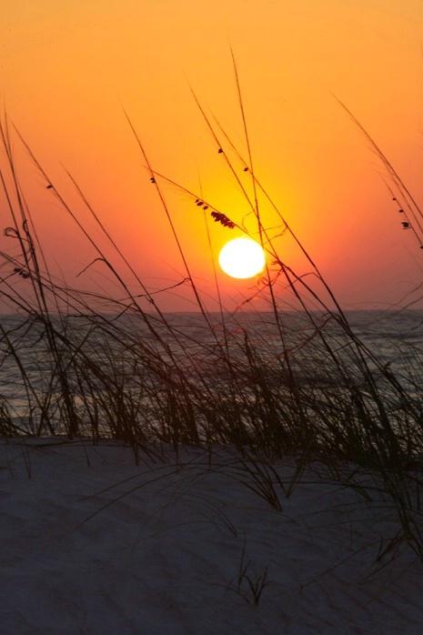 Florida Sunset - ID: 1872275 © Jacqueline Stoken
