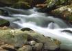 Little River at E...