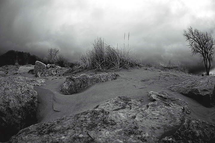 Beach Grass and Rocks-Infrared Fisheye - ID: 1907066 © Carolina K. Smith