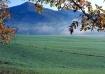 Meadow & Mountain...