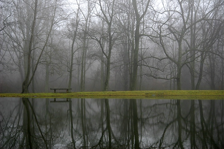 Misty Reflections