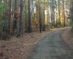 Llano Grande Lane