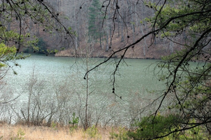 Lost Pond, Keowee Toxaway State Park, Sunset, SC - ID: 1922820 © Judy Riley