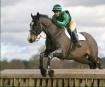 Belton Horse Tria...