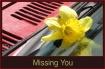 Missing you. Daff...