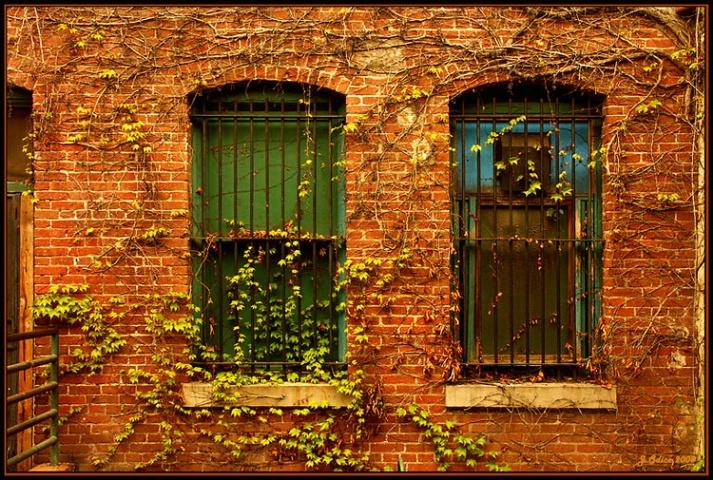 2 Windows In An Alley