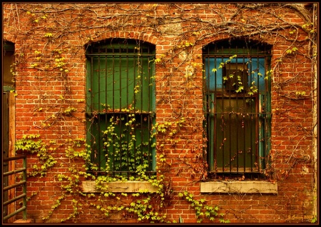 2 Windows In An Alley