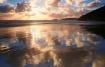 Whisky Beach Suns...