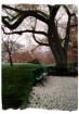 botanical park be...