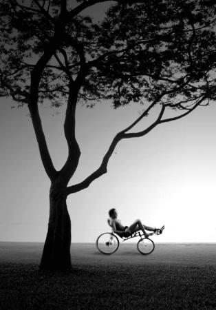 The Cyclist II