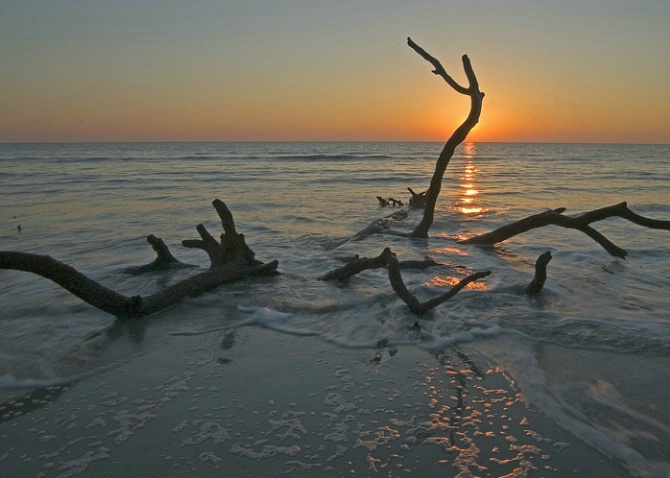 Sunrise, Hunting Island SP, SC - ID: 2042552 © george w. sharpton