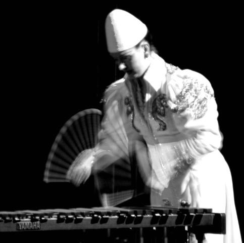 Xilofono player