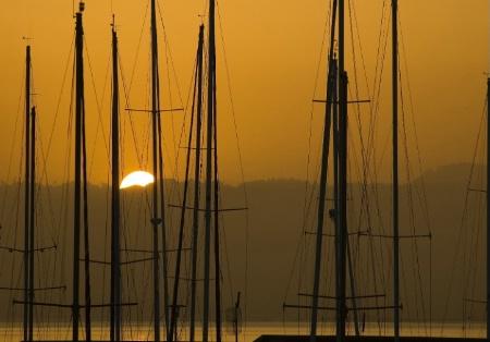 Masts at Dawn