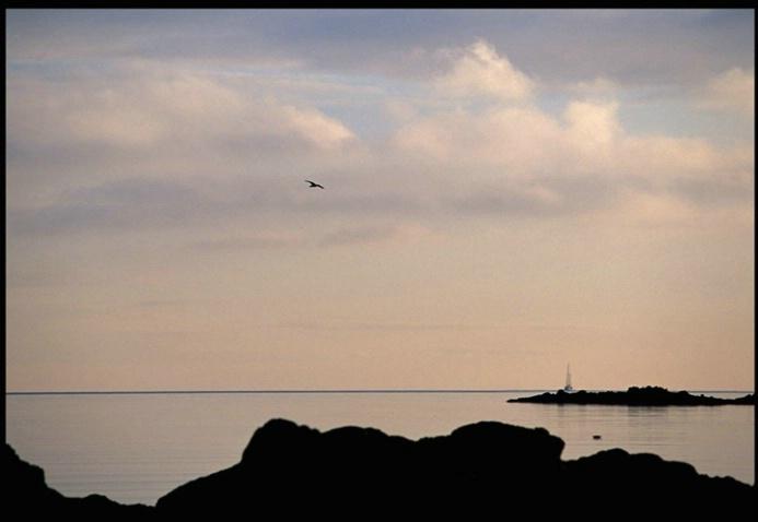 Solway sollitude - ID: 2101236 © Stuart May