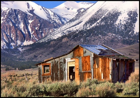 Mono Lake cabin