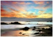 Estero Beach Suns...