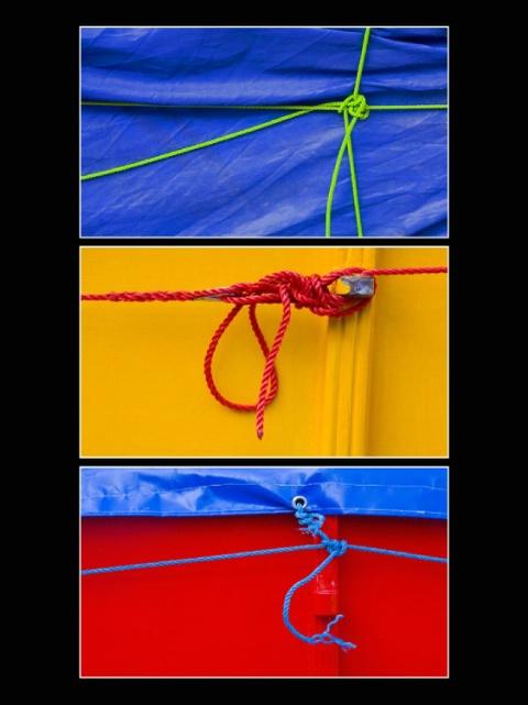 Knot Triptych