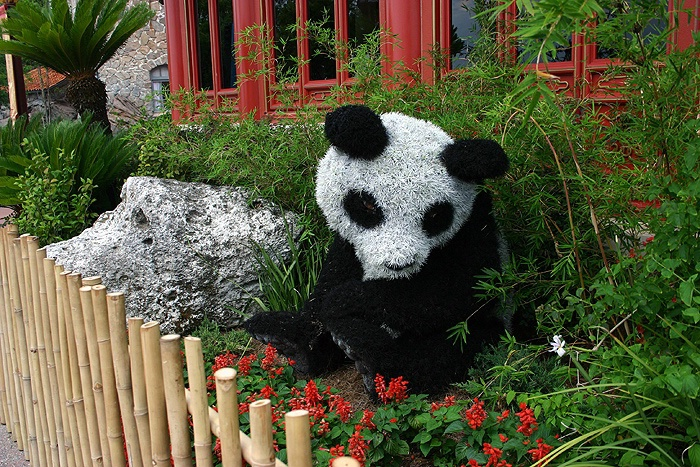 Panda Bush