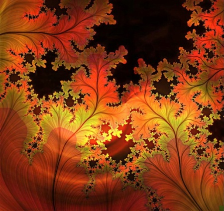 Autumn Lace