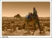 Desert Oases 2