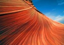 Wave Curve