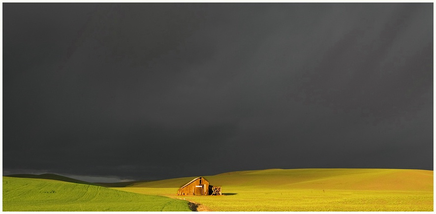 Swallowing Barns In The Palouse