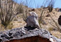 Its a bird, its a rock....its...Super Rock!